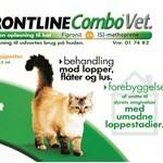 Gør din kat fri (foto petworld.dk)